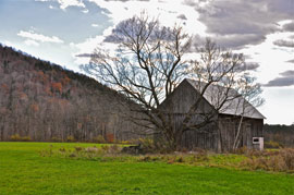 old barn east coast Missed Peak Fall Color, Though Trip East Anything But Drab